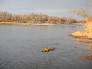 Snake River.jpeg