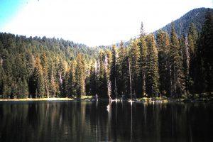 Aldous Lake